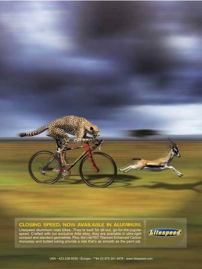 ad_litespeed_cheetah