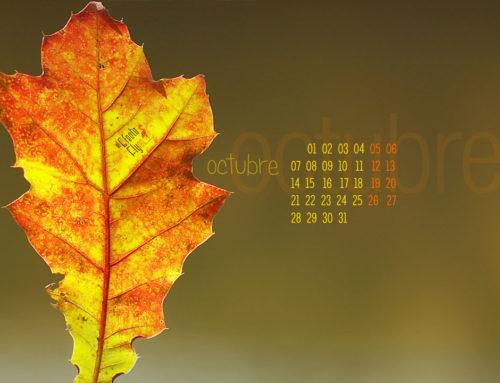 Estamos en otoño