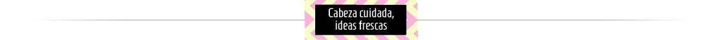 ideas-frescas